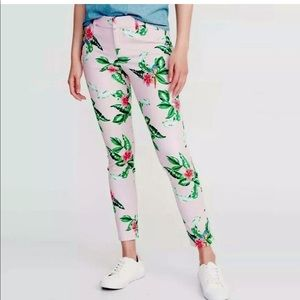 OLD NAVY Parrot Pixie Pants Size 18 NEW